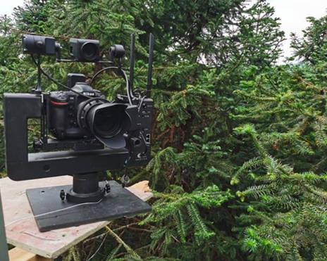 U100智能摄影手试用案例—高空拍摄小白鹭